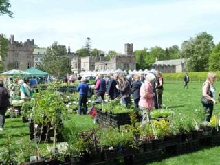 Plant and food fair at Hutton-in-the-Forest