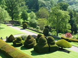 Terraces and Topiary